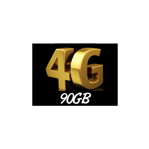 90GB интернет